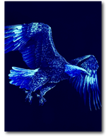 Load image into Gallery viewer, Eagle Wings with Stone Eye Glow in the Dark HD Rock Chang T-Shirt
