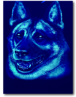 Load image into Gallery viewer, Dog Glow in Dark HD Rock Chang T-Shirt