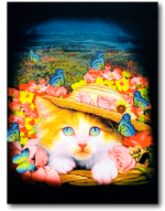 Load image into Gallery viewer, Kitty Cat Rock Chang T-Shirt