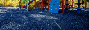 Playtime is Safer with Blue Rubber Mulch