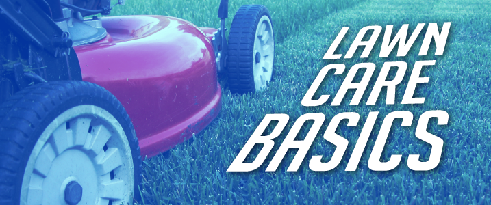 lawn mower on lawn with text lawn care basics