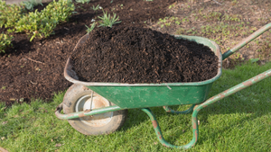 Rubber Mulch for Sustainable Landscapes