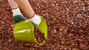 Preventing Coronavirus In A Rubber Mulch Playground