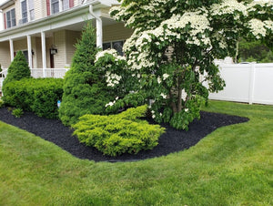 rubber mulch in a beautiful landscape