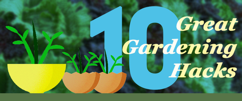 a few planters with sprouts and the text 10 great gardening hacks