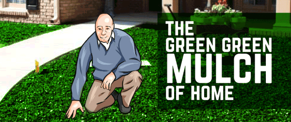 man sitting on his lawn in green rubber mulch