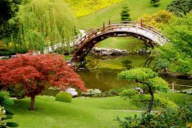green garden with a bridge and trees