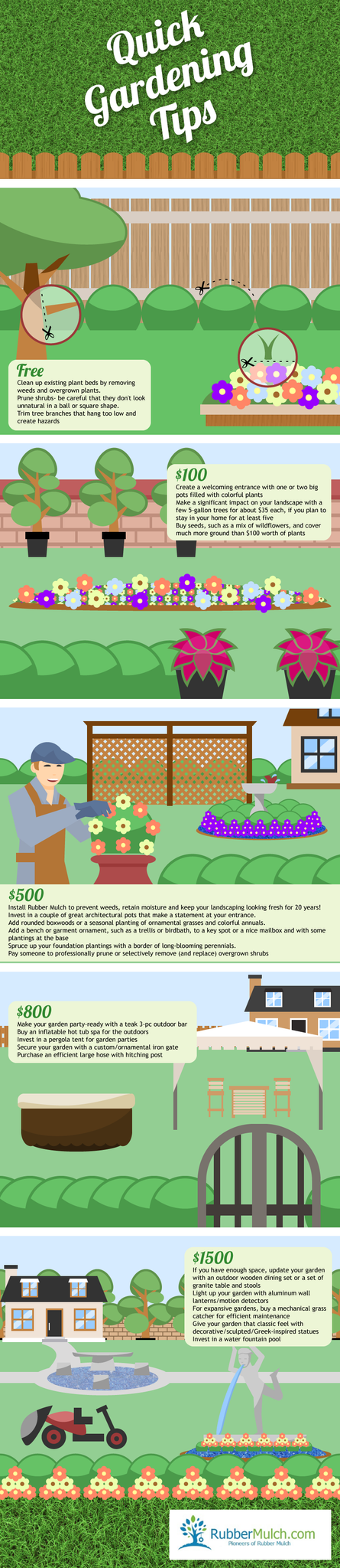 quick gardening tips infographic