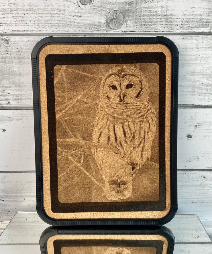Laser Engraved Cork Board