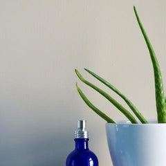 Aloe Vera & french lavender water