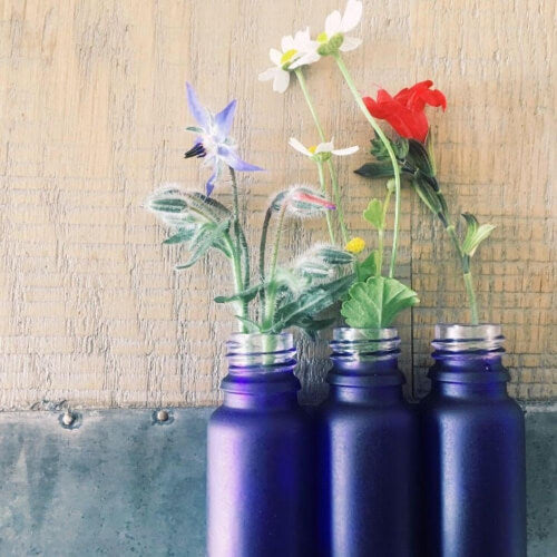 OV naturals glass bottles with herbs on wooden background.
