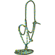 Load image into Gallery viewer, Mustang Flat Noseband Plaited Halter