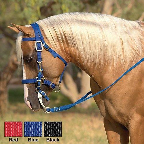 Nylon Halter Bridle with Bit - FG Pro Shop Inc.