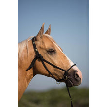 Load image into Gallery viewer, Mustang Control Halter