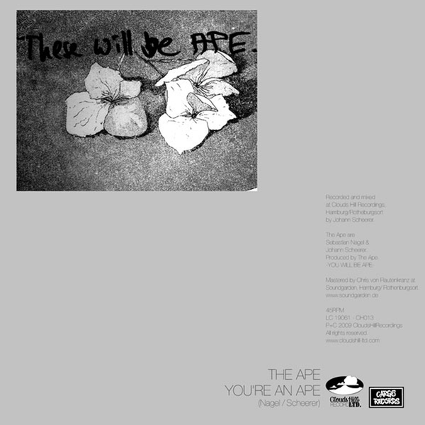 The Ape - You're An Ape - 7""