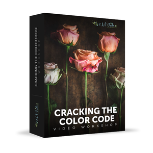 Cracking The Color Code - Workshop