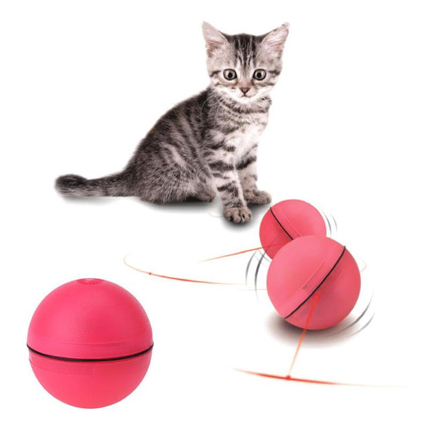 Cat LED Laser Ball