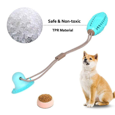 Pet Dog Toys Silicon Suction Cup