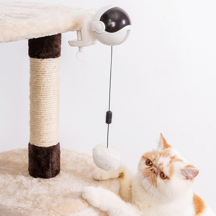 Electric Motion Cat Toy