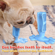 Toothbrush Pet Chew