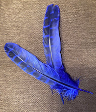 Load image into Gallery viewer, Dyed Pheasant Feathers