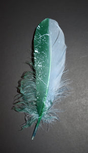 Custom Painted Feathers