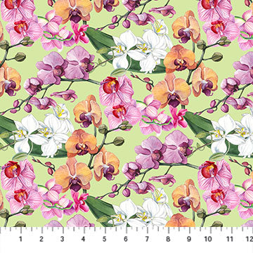 Orchids in Bloom - DP23870-74 (1/2 Yard)