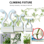 10pcs Invisible Wall Vines Hook