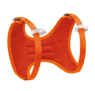 Kids' Body Harness