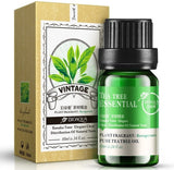 Bioaqua Skin Care Essential Oil Tea Tree 10ML - BQY8875
