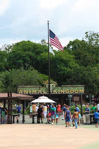American Flag Proudly Displayed at The Entrance to Disney's Animal Kimgdom