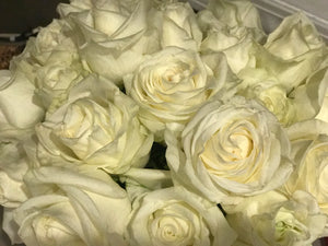 Wholesale Roses Varieties