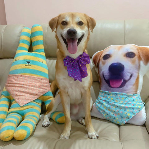 Great Mother's Day Gifts For Dog Lovers Image 6
