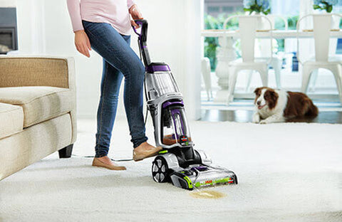 How To Clean Dog Pee From Carpet Image 4