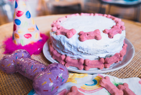 Top 5 Easy Dog Birthday Cake Recipes in 2021 Image 2