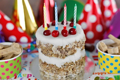 Top 5 Easy Dog Birthday Cake Recipes in 2021 Image 6