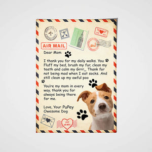 Paw Mail For Mom Custom Pet Portrait Poster - Noble Pawtrait