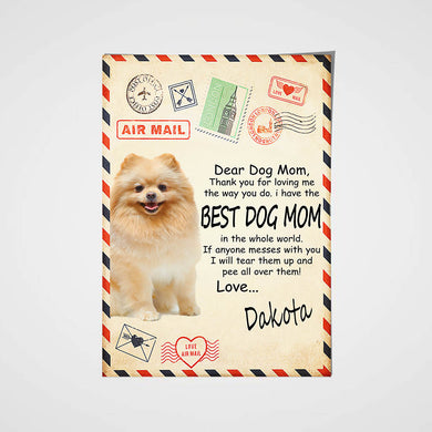 Paw Mail Mom Gift Custom Pet Portrait Poster - Noble Pawtrait