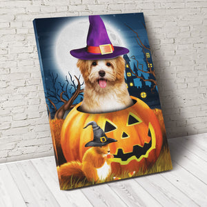 Pawpkin Custom Pet Portrait Canvas - Noble Pawtrait