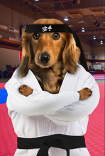 Load image into Gallery viewer, The Karate Paw Custom Poster Pet Portrait - Noble Pawtrait