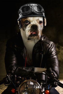 The Biker Custom Pet Portrait Digital Download - Noble Pawtrait