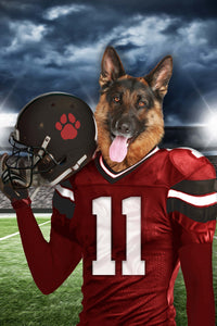 Tampa Bay Fan Custom Digital Download Pet Portrait - Noble Pawtrait
