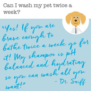 wash your pet with dr sniff shampoo as often as every day because it is hypoallergenic and pH balanced