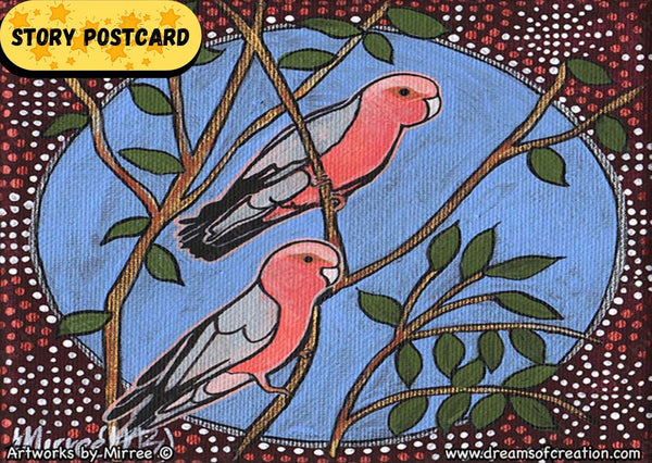 Australian Pink Galah Dreaming Aboriginal Art A6 Story PostCard Single by Mirree