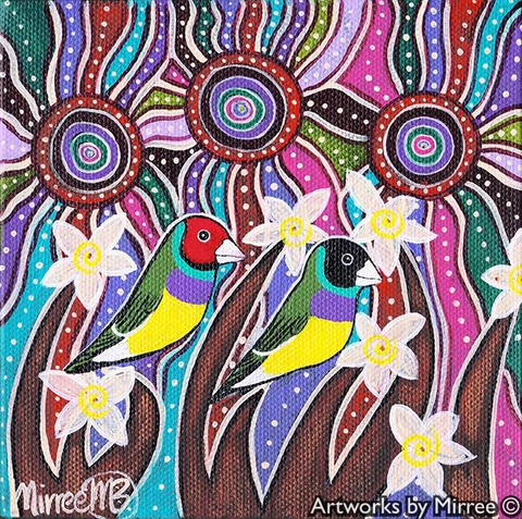 GOULDIAN FINCH Framed Canvas Print by Mirree Contemporary Aboriginal Art