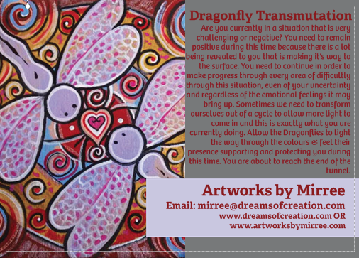 'Dragonfly Transmutation' COLOUR PHOTOGRAPH by Mirree Contemporary Dreamtime Series