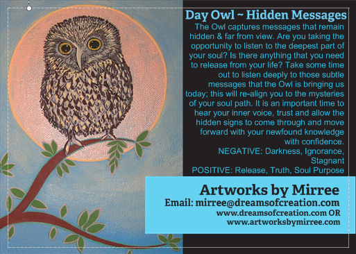 'Day Owl' COLOUR PHOTOGRAPH by Mirree Contemporary Dreamtime Animal Series