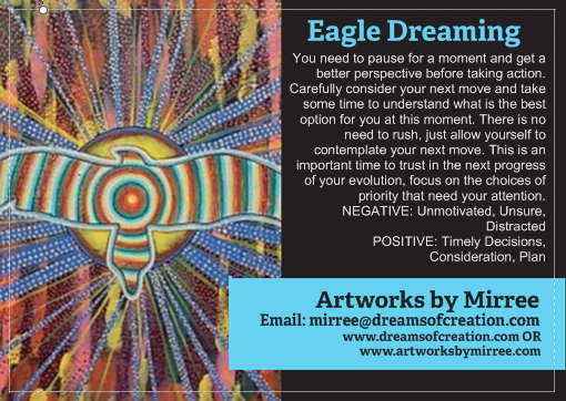 'Eagle Dreaming' COLOUR PHOTOGRAPH by Mirree Contemporary Dreamtime Animal Series