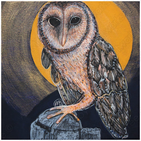 'Tasmanian Barn Night Owl' COLOUR PHOTOGRAPH by Mirree Contemporary Dreamtime Animal Series