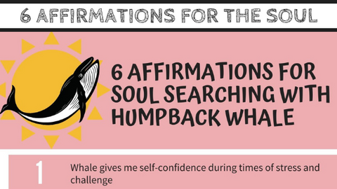 """6 Affirmations for Soul Searching with Humpback Whale"" Guide with Mirree PDF"